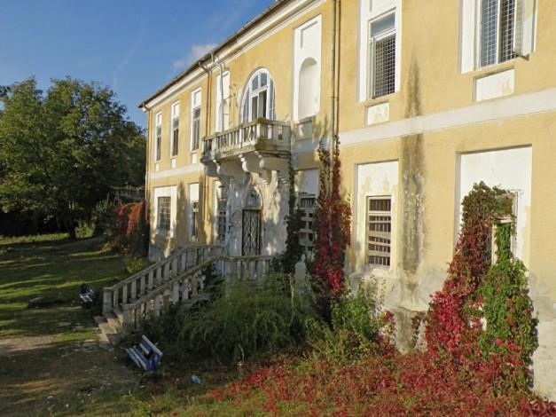 Conacul-Crupenschi-din-Podoleni-20101206125247